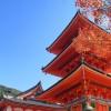 Japon merveilleux 14 jours