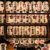 Grand tour du Japon 22 jours