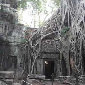 Vietnam Laos Cambodge  24 jours (2020)