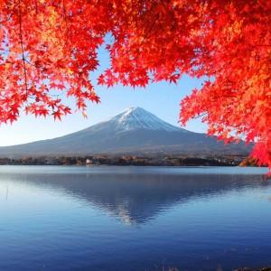 Japon splendide 18 jours (2019 automne)