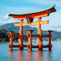 La qualité de votre organisation pour notre voyage Chine & Japon